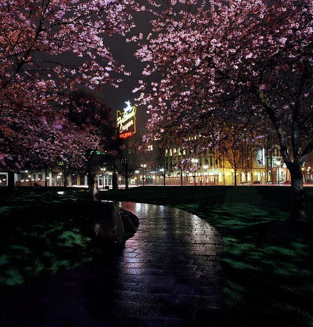 One way to spend a perfect Portland night by Zeb Andrews, via Flickr