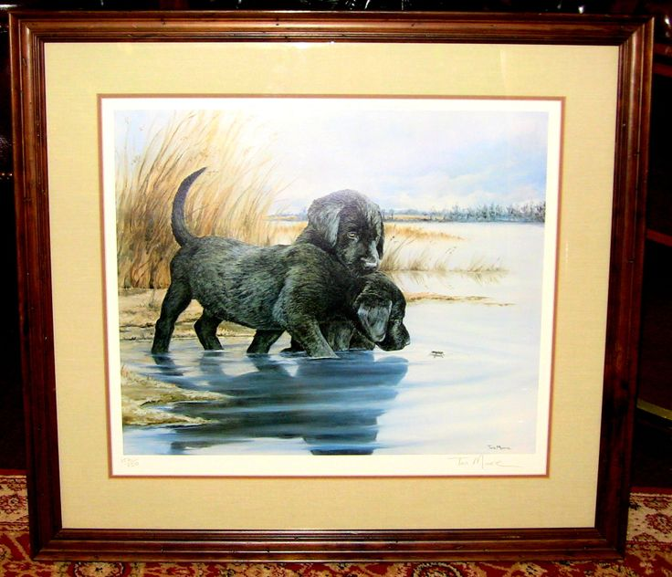 lab pups and waterbug by tara moore sn limited edition print