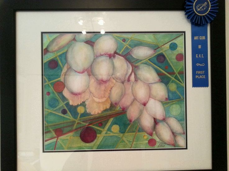 """Flower buds from Ginger.  1st Place Ribbon moved from """"Intermediate Watercolor"""" to """"Advanced"""" category."""