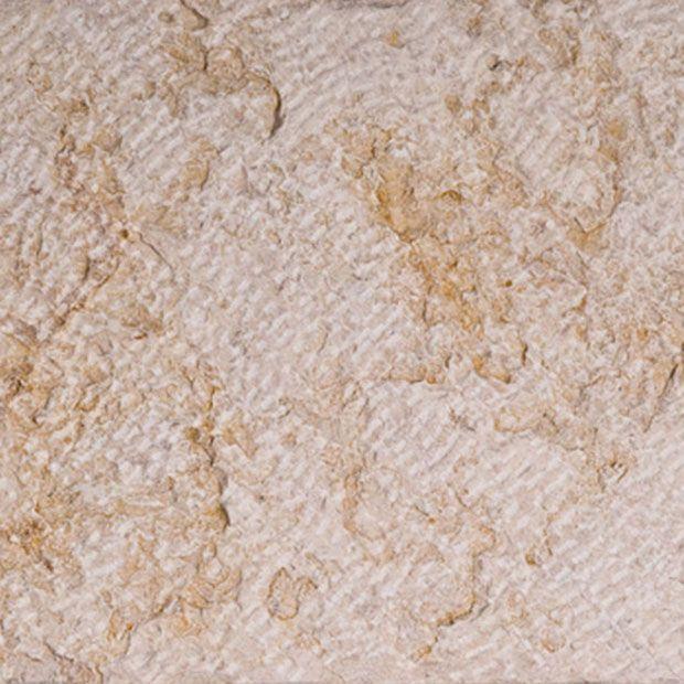 Biblical Ivory Limestone