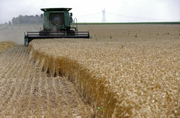 By Jo Winterbottom and P.J. Huffstutter CHICAGO (Reuters) - Across the U.S. Midwest, the plunge in grain prices to near four-year lows is pitting landowners determined to sustain rental incomes against farmer tenants worried about making rent payments because their revenues are squeezed. On Friday, tractor maker John Deere cut its profit forecast citing falling sales caused by lower farm income and grain prices. Many rent payments – which vary from a few thousand dollars for a tiny farm to…