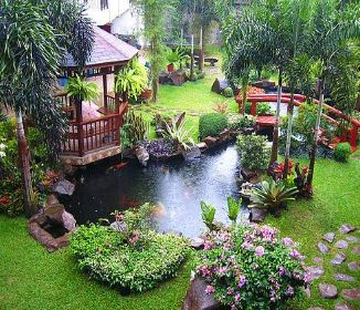 Great garden landscaping ideas including patios,ponds,water features,turfing and an inexpensive design service to bring your dreams to reality