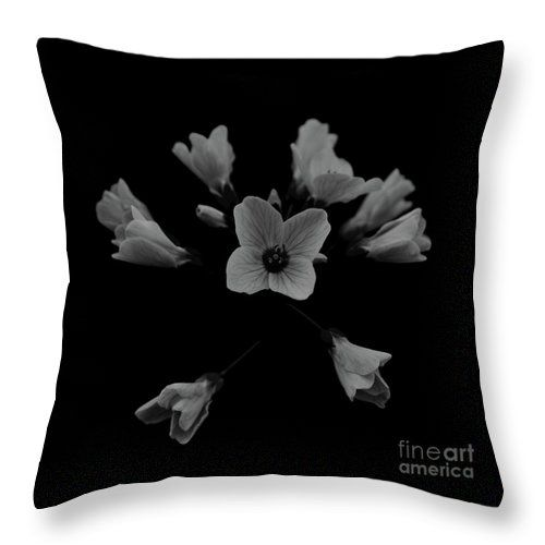 """Cuckooflower Throw Pillow by Sverre Andreas Fekjan.  Our throw pillows are made from 100% spun polyester poplin fabric and add a stylish statement to any room.  Pillows are available in sizes from 14"""" x 14"""" up to 26"""" x 26"""".  Each pillow is printed on both sides (same image) and includes a concealed zipper and removable insert (if selected) for easy cleaning."""