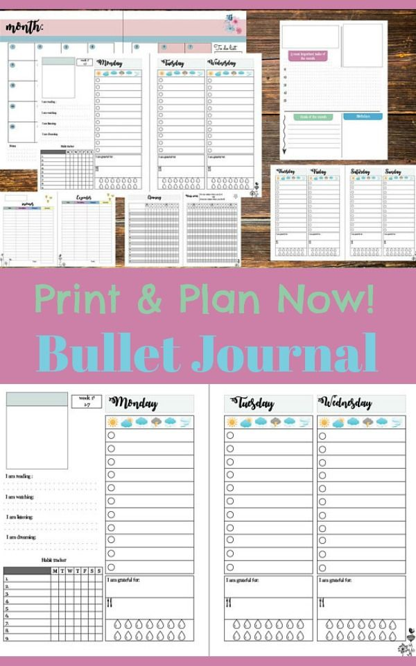 time to get organized bullet journal printable daily habits