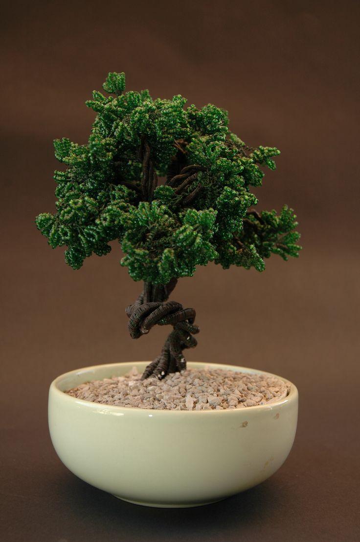 1000 Images About Artizanal Bonsai On Pinterest
