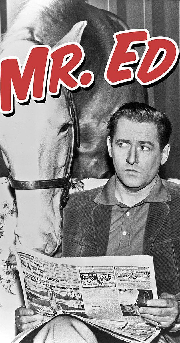 Created by Sonia Chernus, Walter Brooks. With Allan Lane, Alan Young, Connie Hines, Mister Ed. The misadventures of a wisecracking talking horse and his human owner.