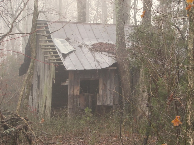 40 Best Old Shacks Images On Pinterest Small Cabins