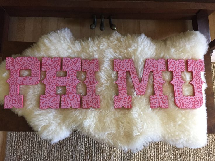 Phi Mu hand painted letters