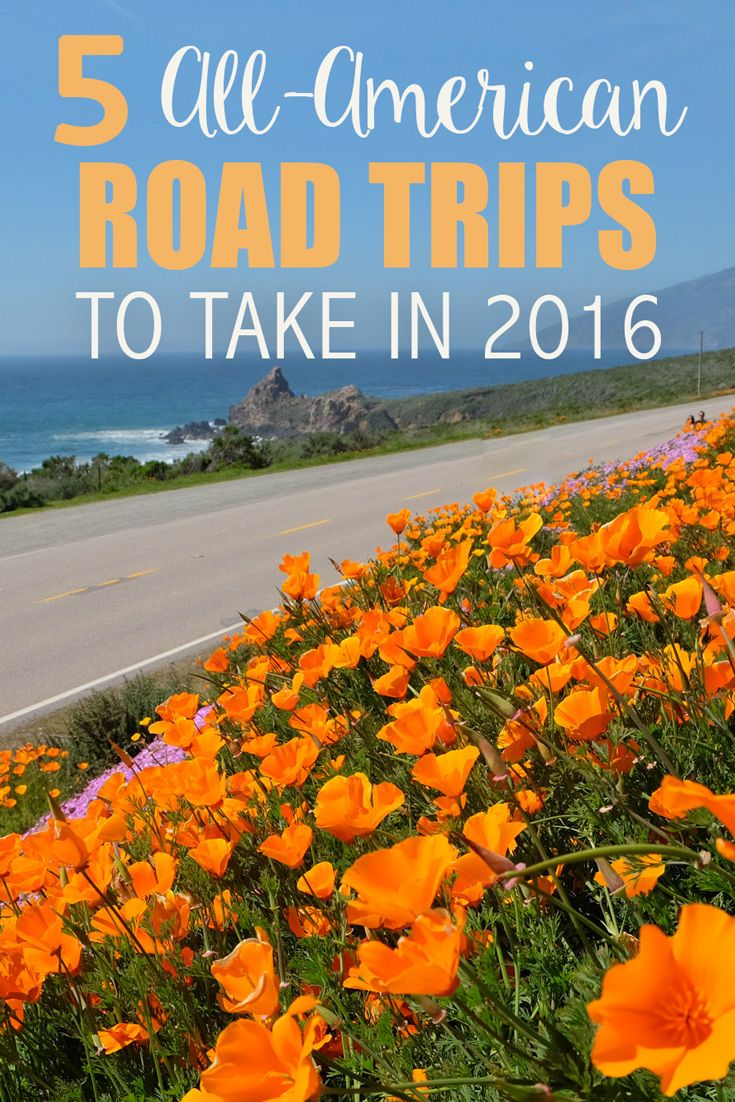 Ready to hit the road? There is nothing like a wide open highway to make you fall in love with traveling all over again. If you have never been on your own quintessential American road trip, there is