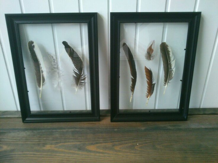 Framed floating feathers diy