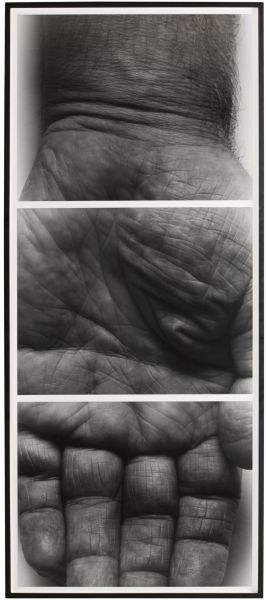 Self Portrait (Hand, 3 panels, vertical) by John Coplans, 1990