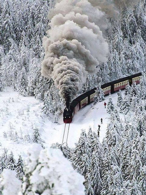 Harzer Schmalspurbahn Wernigerode - Brocken