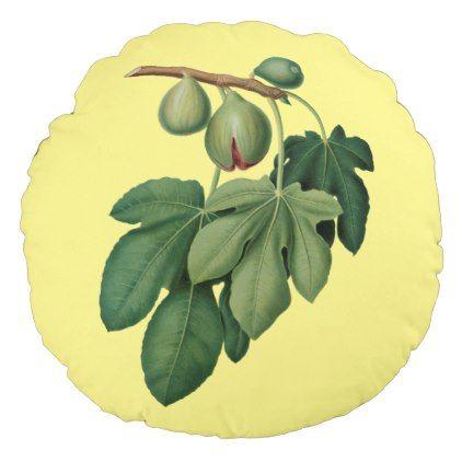 Figs  Botanical Fruit  Giorgio Gallesio     Round Pillow - vintage gifts retro ideas cyo