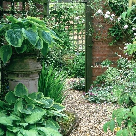 Thoughts from the gardener: Shady discount, trellis, gravel ... Wonderful!