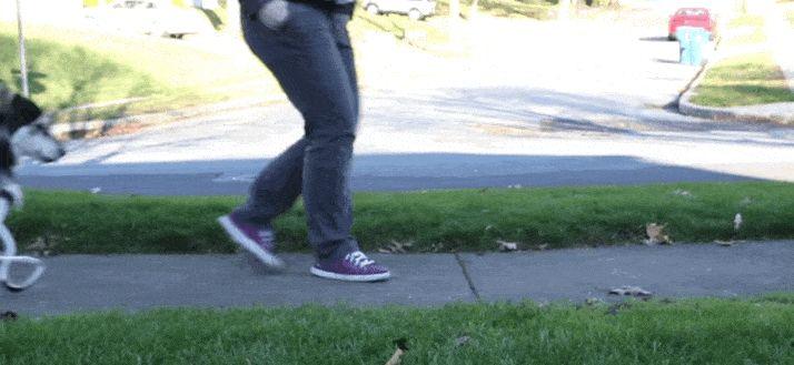 O γλυκύτατος σκύλος Derby χάρη του 3D εκτυπωτή περπατά κανονικά σαν τα άλλα σκυλιά
