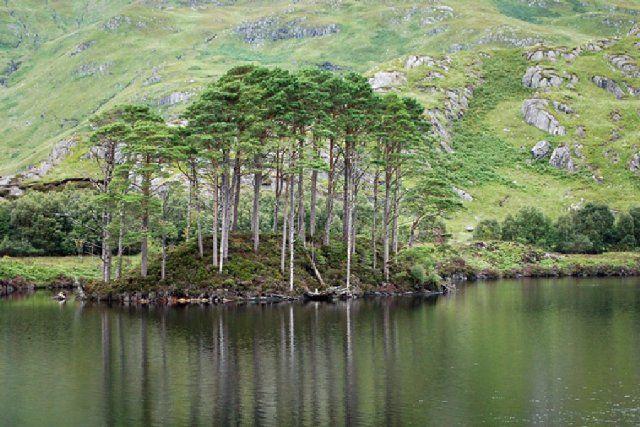 Loch Eilt, Ecosse