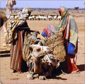 Somalia Culture | Understanding Somalia