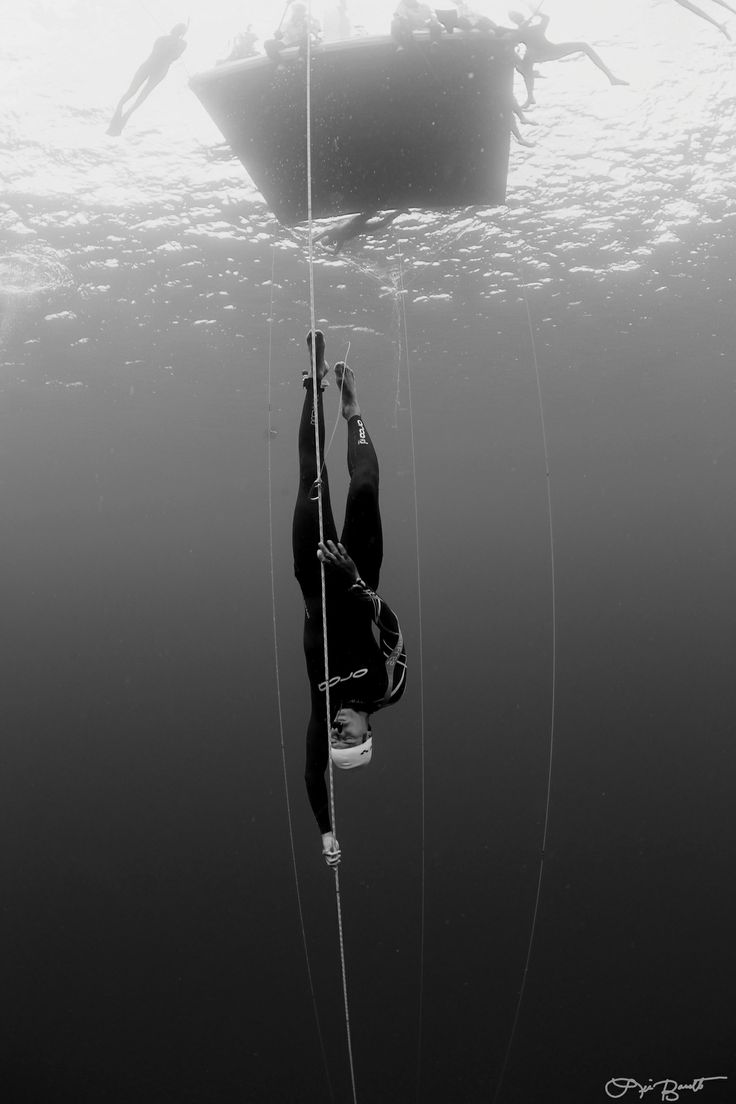 Do you want to go Free Diving? Find where you can.