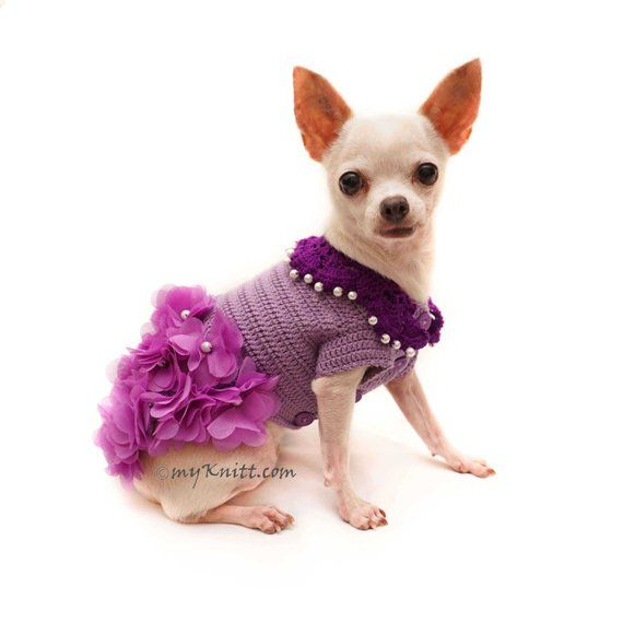 Purple Chihuahua Dress Flower Dog Dress Crochet Dog Wedding