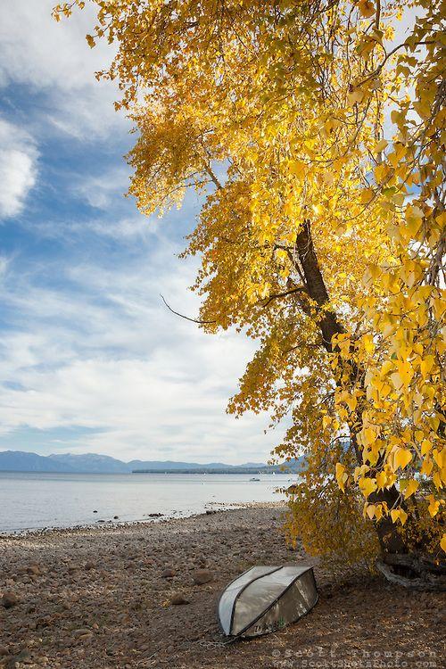 Lake Tahoe, California   Autumn Looks Like A Colorful Forest, Feels Like  Warm Clothes