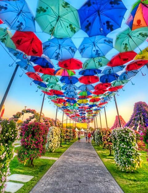 Dubai Miracle Garden #earth #beautiful #world #travel #places