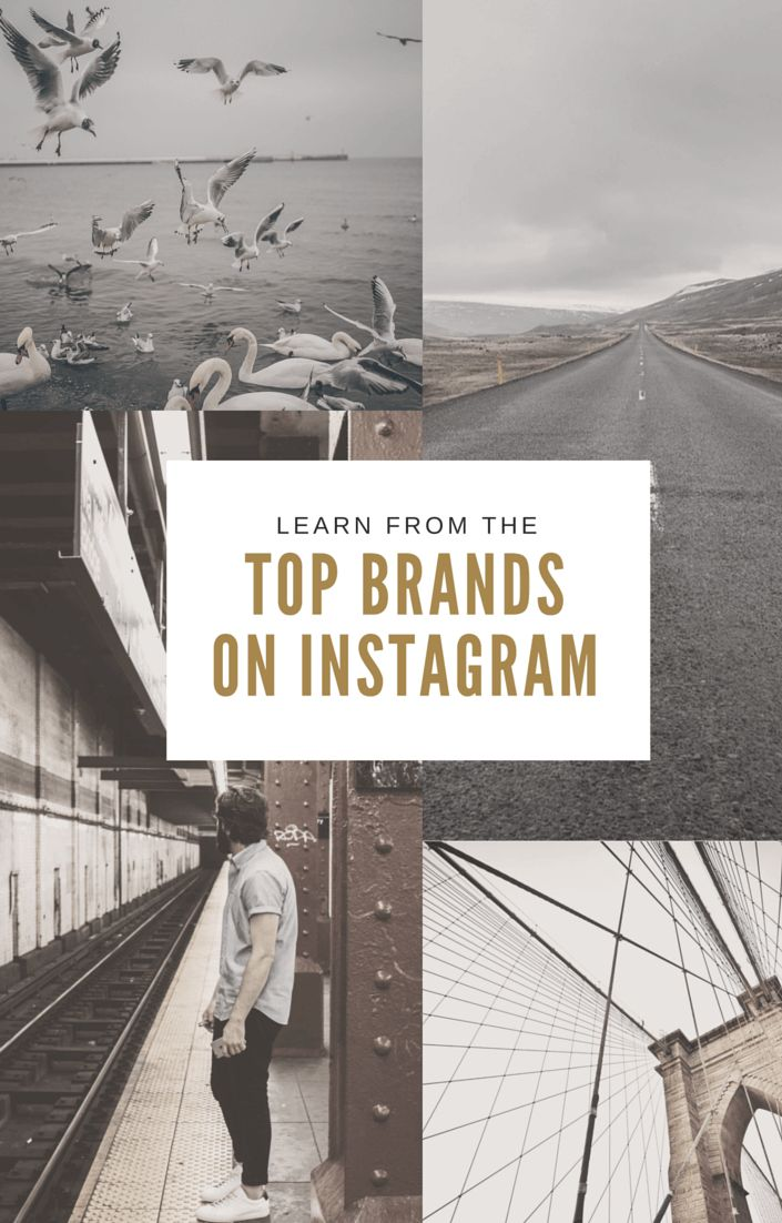 Vital Lessons From The Top Brands On Instagram — Design School 961ab91ec4376c1e9f6279bd5e0b42fc