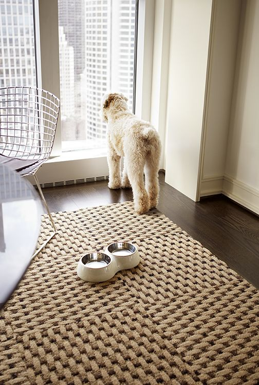 Strong and sturdy enough to stand up to your canine companion. Playroom  OrganizationBasement Family RoomsCarpet ...