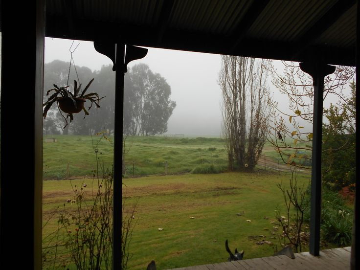 View of the farm from the living room window