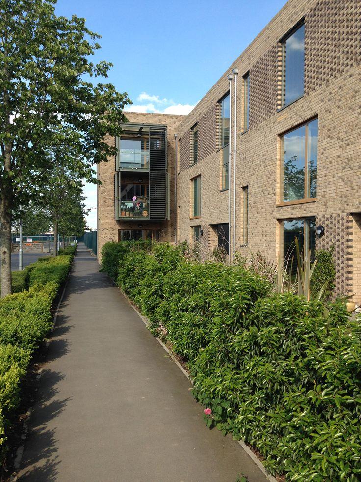 Proctor Matthews - Abode - Great Kneighton - Cambridge
