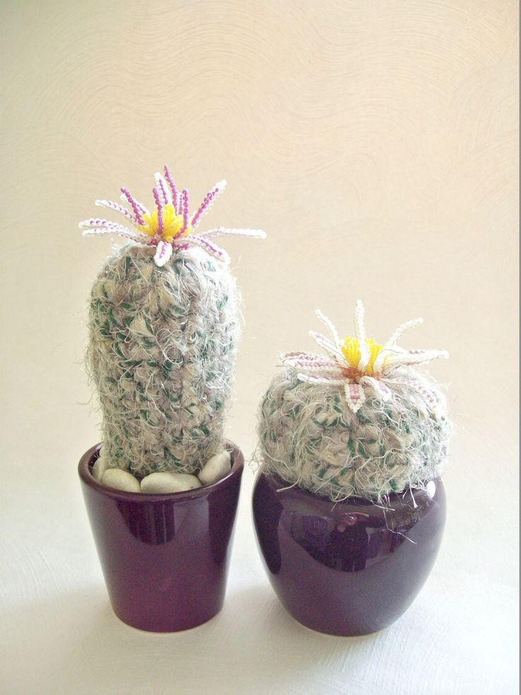 1000 id es sur le th me cactus en crochet sur pinterest for Plantes de bordures fleuries