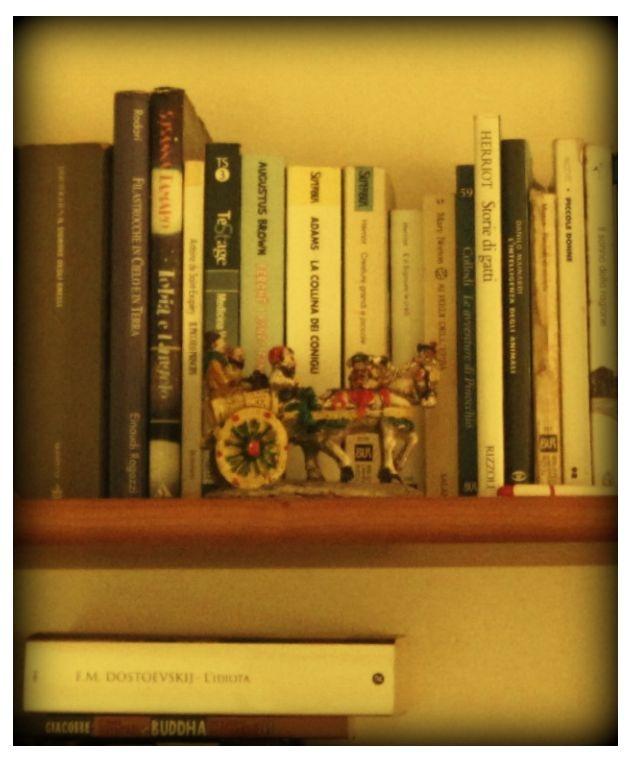 Cosa ci fa un carretto siciliano vicino a una copia dell'Idiota di Dostoevskij e a un trattato sui gatti? Semplice: è la libreria della tropicana Maria Ponte!