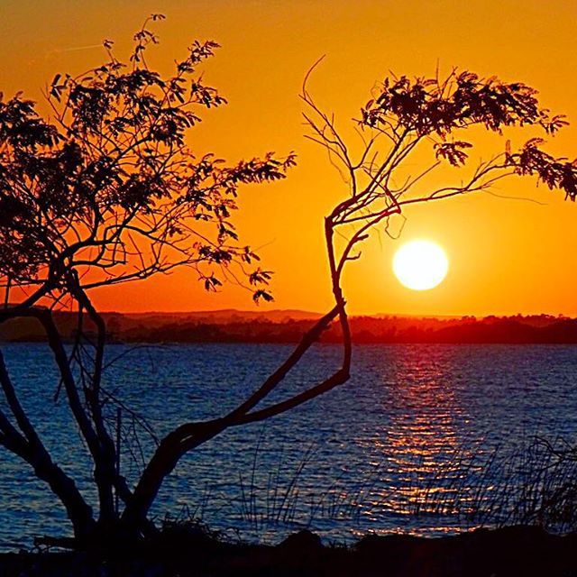 #artsunsets #arteemfoco #concursovivaguaíba #cameraemfoco #click_n_share #clupofthephoto #enchanting_sunsets #fotoencantada #galerieclub #ig_today #igerspoa #brazilgram_ #instadozamigos #image_gram #myheartinshots #nature_sultans #respirofotografia #sunset_in_bl #sun_and_beach_sb #sunrise_and_sunsets #worldmastershotz_sunsky #hora_dourada #loves_siam #brasil_greatshots #world_bestsunset #astralshot #brasilbr55_rs #Brasil_Estrella #ig_great_pics #ig_riograndedosul_