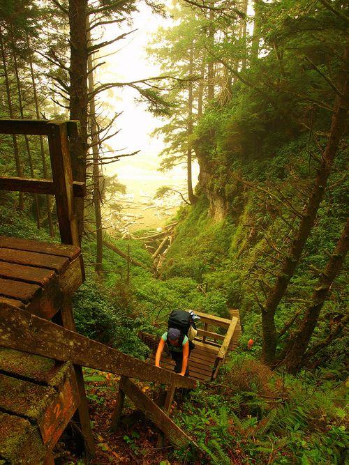 West Coast Trail in B.C.