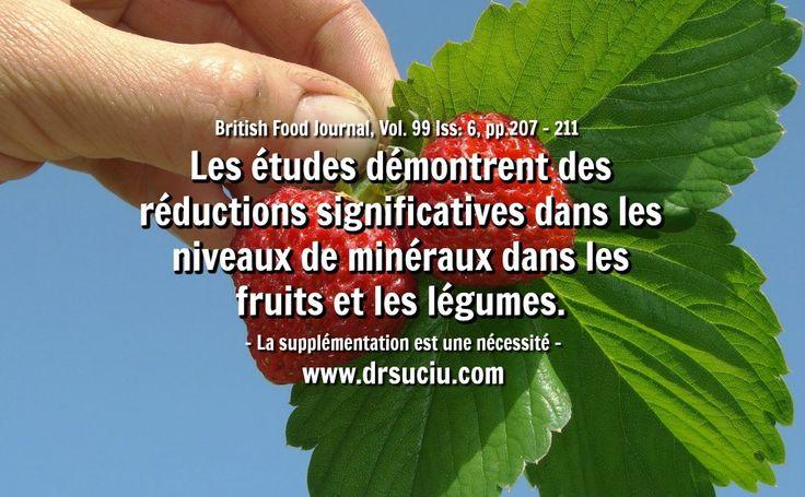Photo Perte des minéraux dans les légumes et les fruits - drsuciu