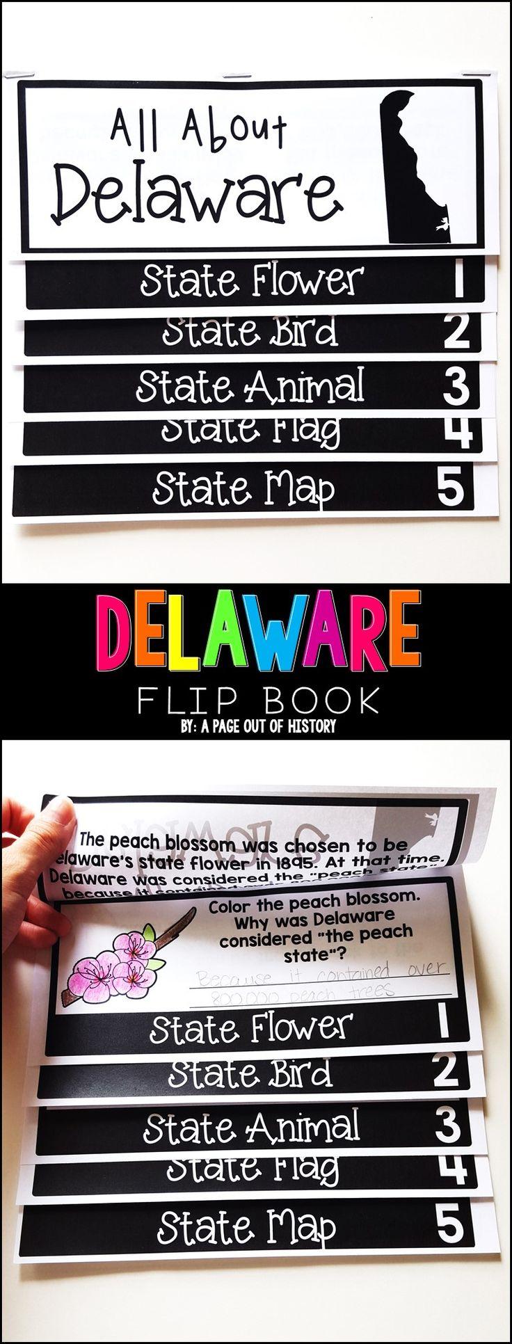 125 best 50 states images on pinterest teaching social studies