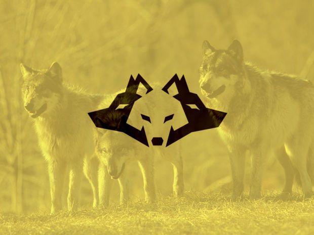 wolf/ves logo - negative space