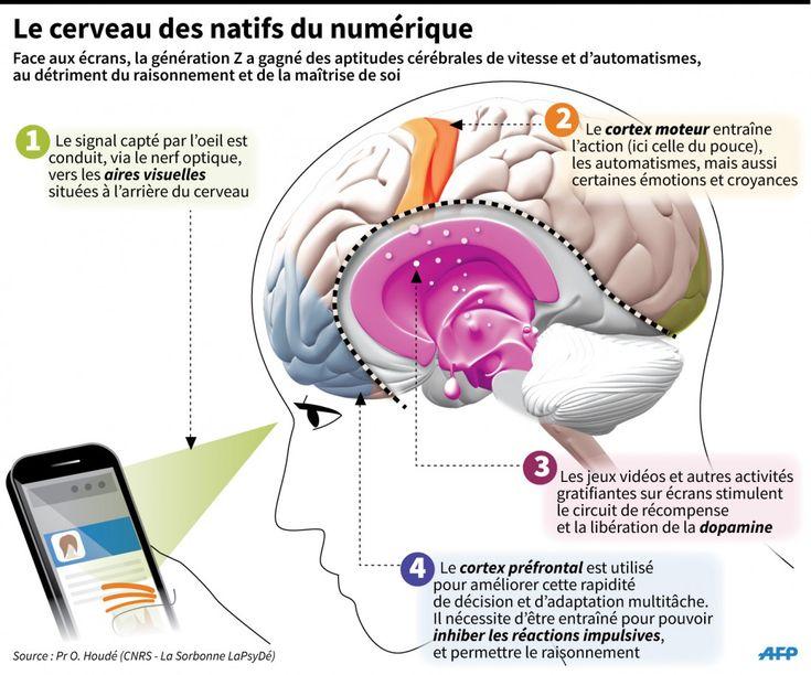 Génération Z : le cerveau des enfants du numérique- 12 février 2015 - Sciencesetavenir.fr