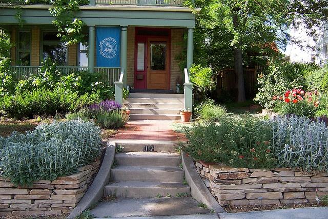 17 best images about low water garden ideas on pinterest. Black Bedroom Furniture Sets. Home Design Ideas