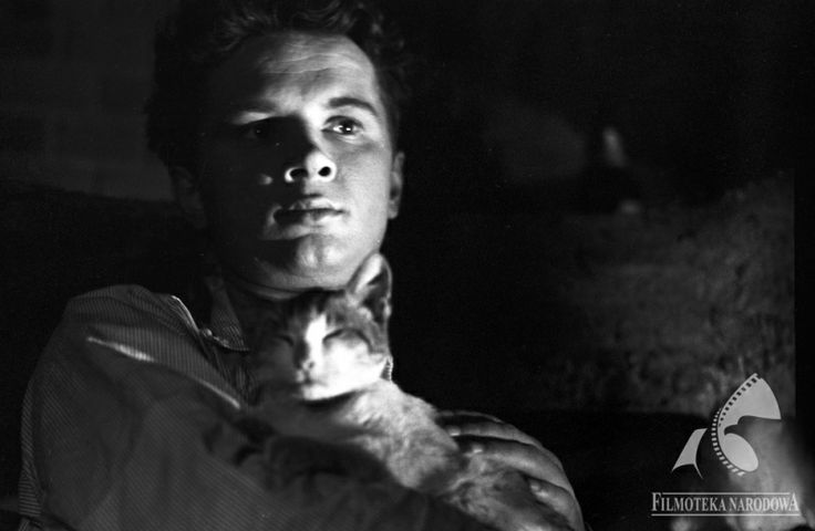 "#Cat in the film ""Zamach"", 1958"