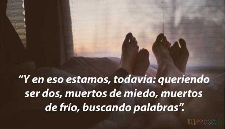 20 Frases De Amor De Eduardo Galeano: 105 Best Images About Quotes On Pinterest