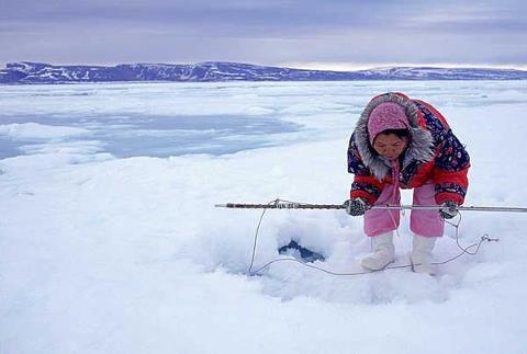 seal hunting nunavut