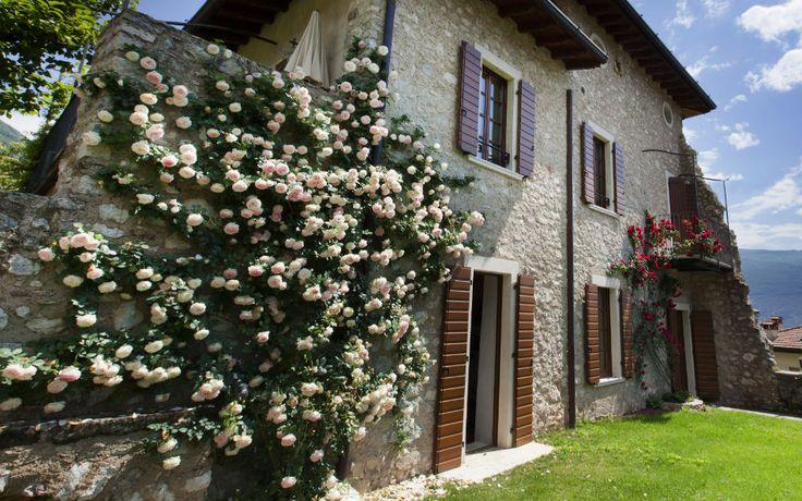 Residence Campagnola Ferienwohnungen Gardasee mit Pool  Ferienwohnung Gargnano