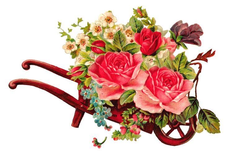 Antique Images: Free Digital Flower Rose Images of Rose Bouquet in Wooden Wheel Barrow