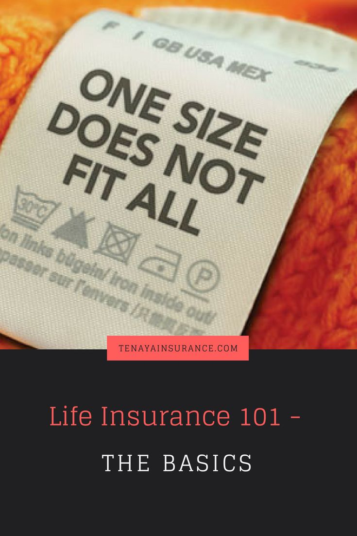 Life Insurance 101 The Basics With Images Life Insurance Quotes Life Insurance Types Life Insurance Cost
