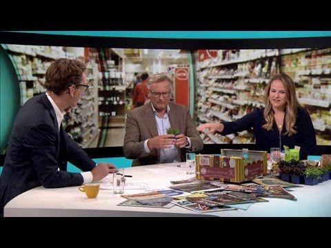 Koppert Cress bij RTL Z - Voedsel van de toekomst? Gezonder alternatief voor zout | Koppert Cress Benelux