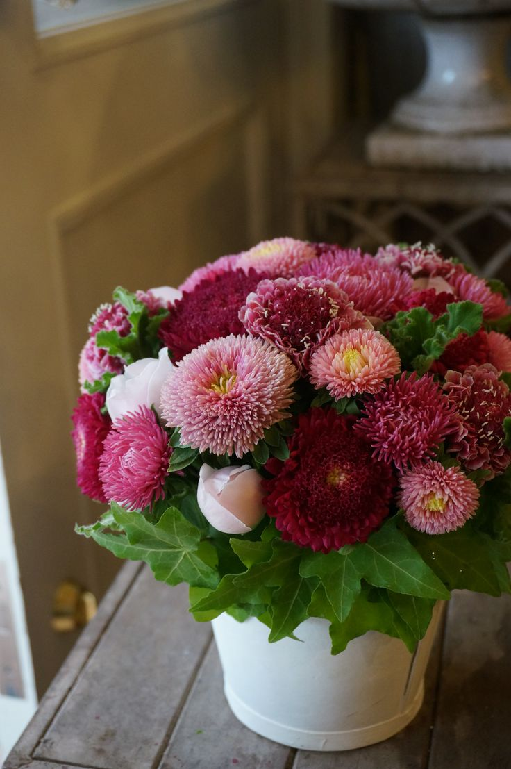 68 best matsumoto aster wedding flowers images on pinterest china asterrose and scabiosa dhlflorist Choice Image