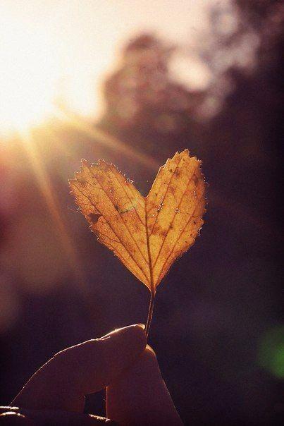 осенний листик в виде сердца