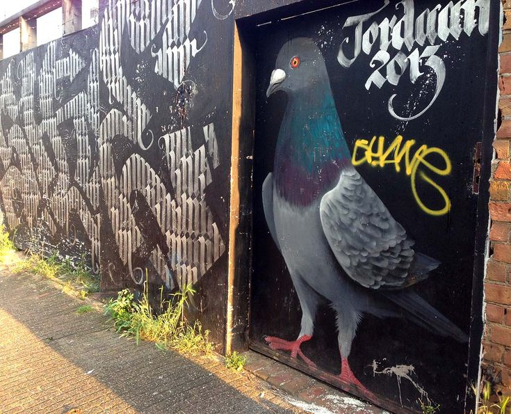 jordaan pigeon street art amsterdam :: While there are certain areas in Amsterdam that might have more street art than others, I recommend just wandering around and keeping your eyes peeled for interesting examples. Most of my favorite works are found in random places around the city. #streetart #amsterdam