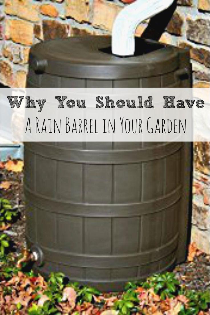 best 25 eco garden ideas on pinterest pallet gardening