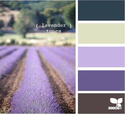 : Design Seeds, Bedrooms Colors, Lavender Fields, Colors Palettes Lavender, Colors Schemes, Master Bedrooms, Lavender Colour Palettes, Lavender Tones, Master Bathroom